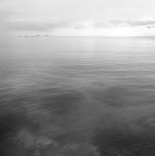 Underwater Sea, 2013